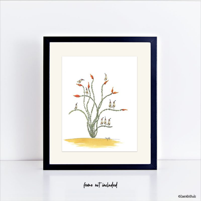 ocotillo quail art print