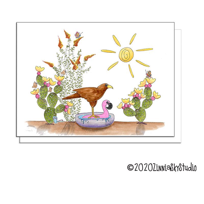 hawk cactus pool