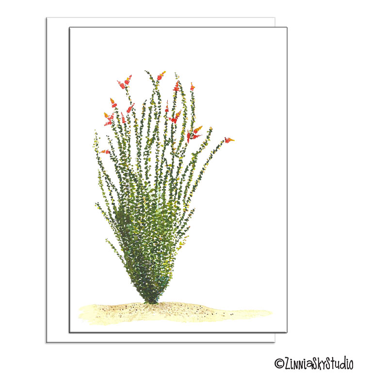 southwest ocotillo cactus blank card