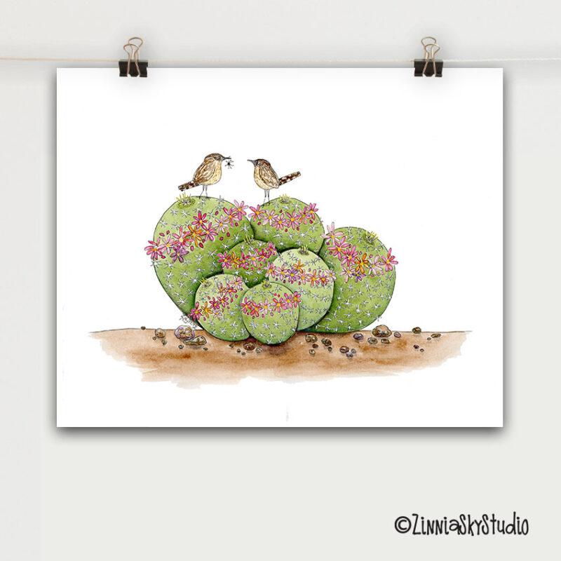 pincushion cactus birds art print