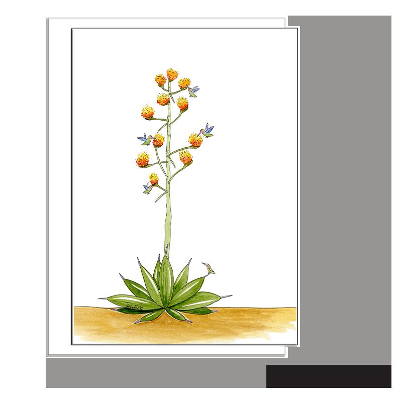 agave cactus hummingbirds blank card