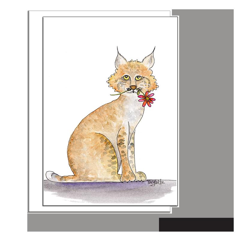 bobcat flower