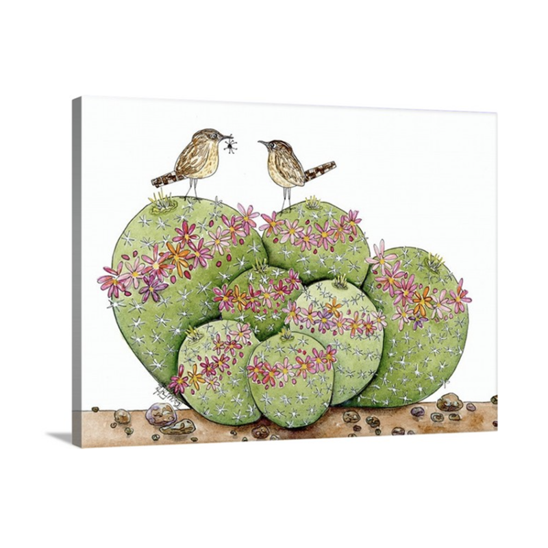 pincushion cactus birds canvas